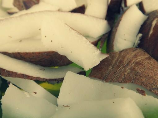 DSCF1584 coconut